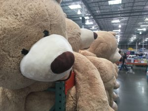 Gigantic bears at Costco